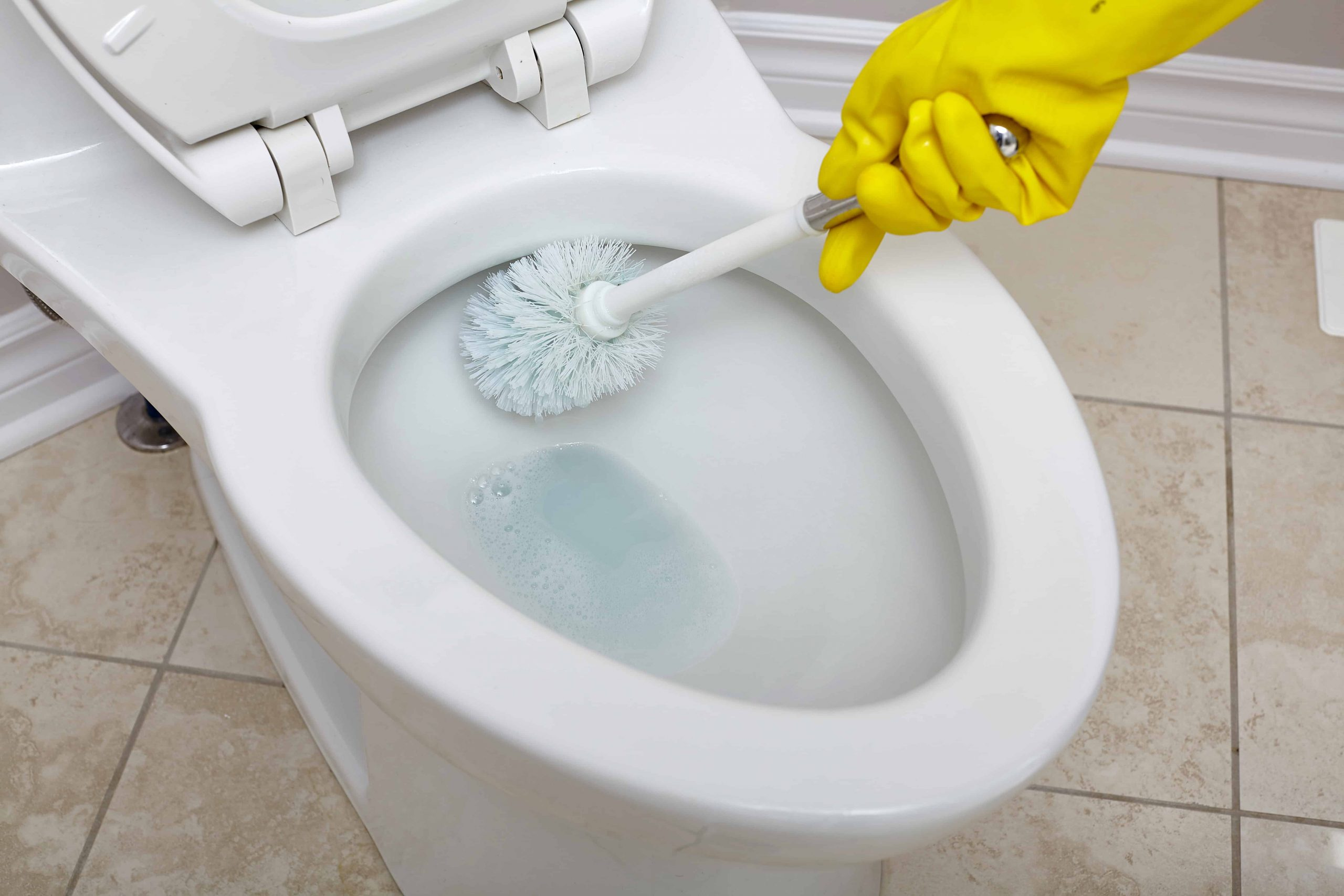 Toilettenbürste: Test & Empfehlungen (12/20)