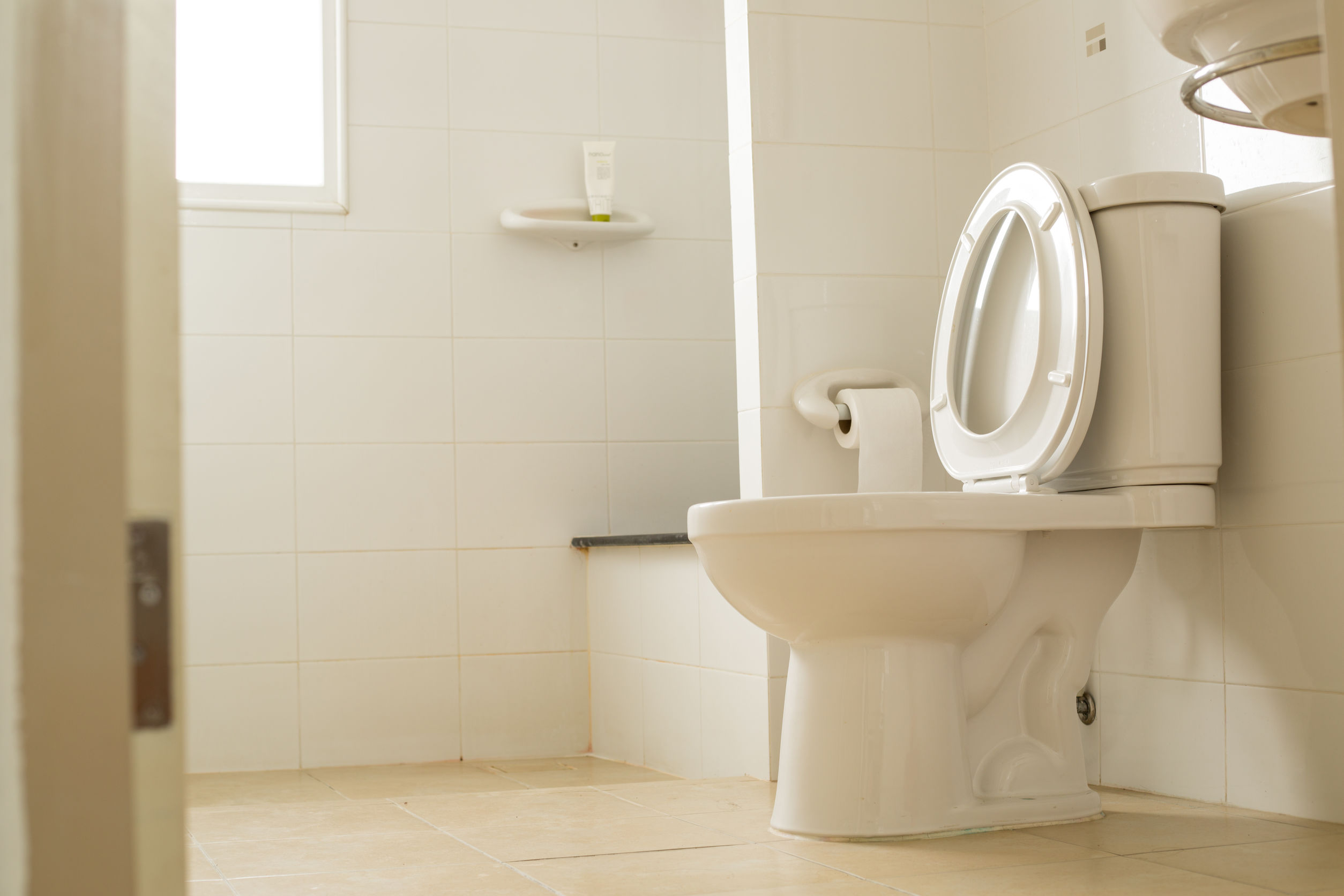 WC Deckel