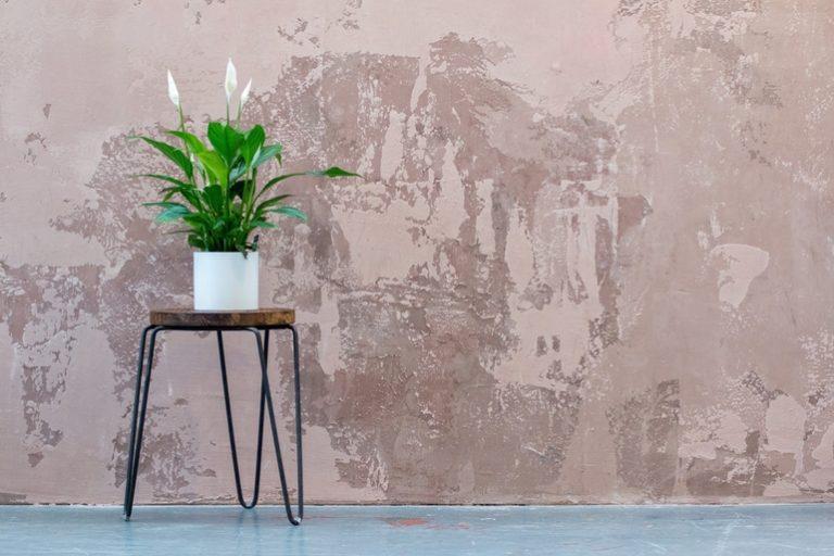Pflanzenständer-2