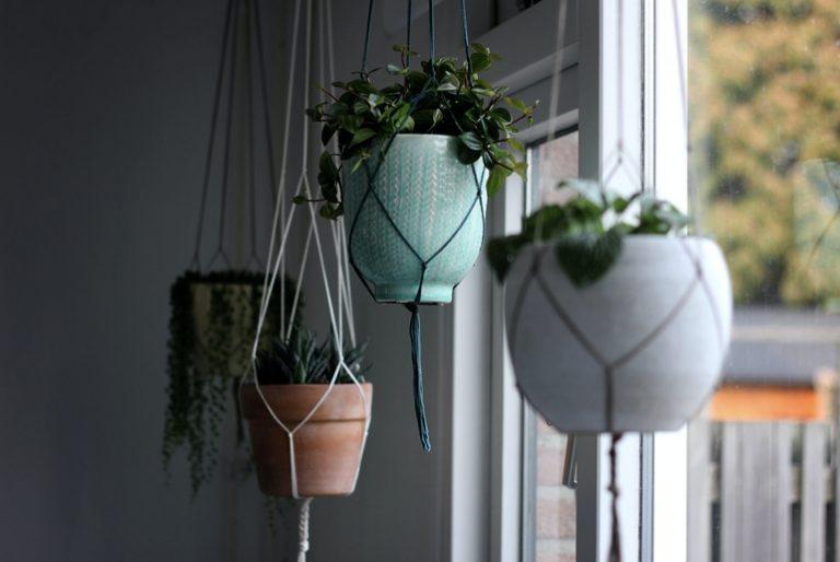 Pflanzenständer-3