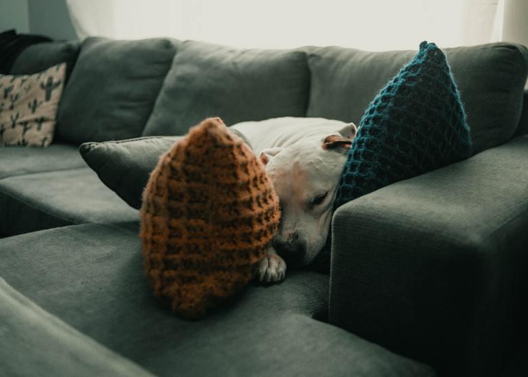 Recamiere mit Schlaffunktion