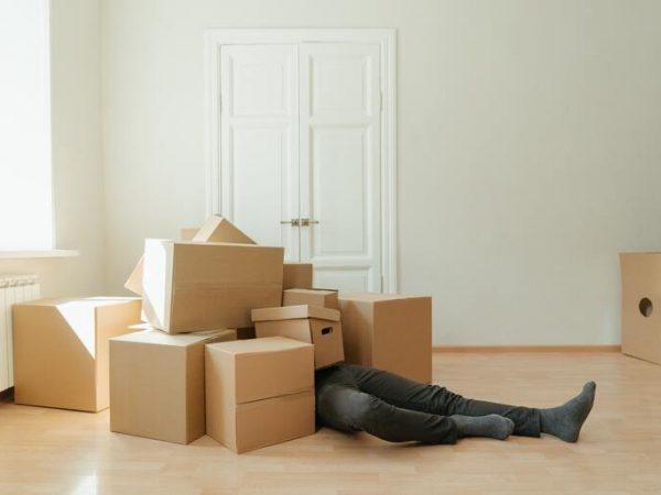 Ein Umzug kann stressig sein, denn all diese Dinge müssen im Voraus geplant und organisiert werden, damit alles reibungslos abläuft. Bildquelle: Cottonbro/123rf