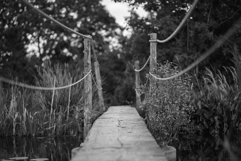 schwarz-weiß Foto einer Teichbrücke mit Seilen als Geländer